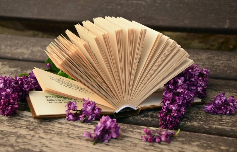 book-760021_960_720