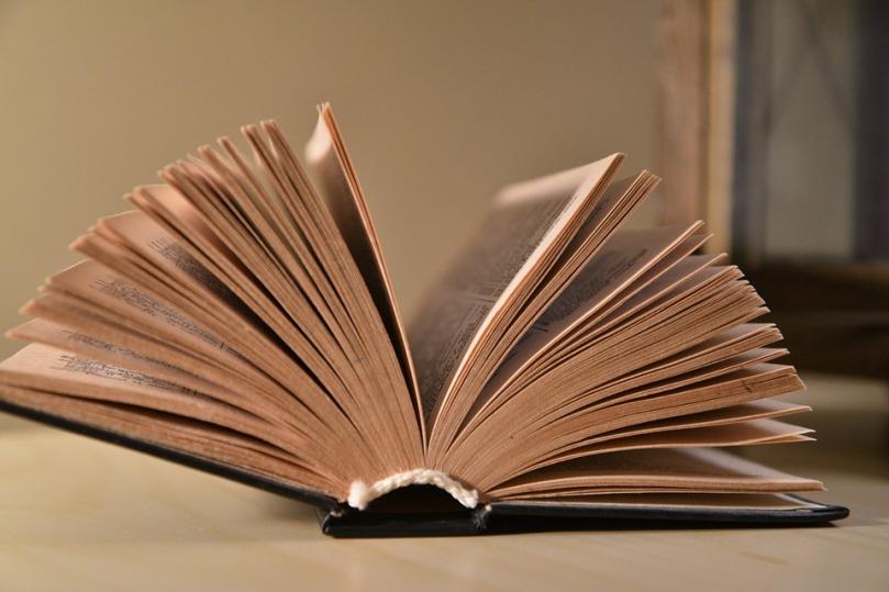 book-3163563_960_720